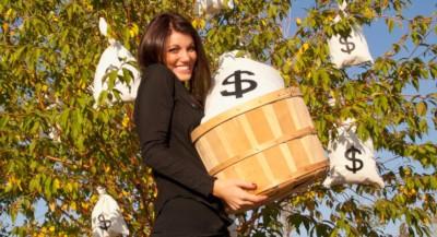 1 oră de business management sau cum să-ți rentabilizezi dorințele